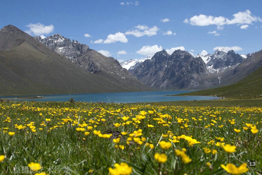 友情转载: 美丽的红原-若尔盖大草原---成都八益摄影艺术沙龙作品选